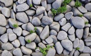 海や川や山の石拾い持ち帰りは大丈夫?違法になる3つの法律の条件(海岸法・河川法・自然公園法)