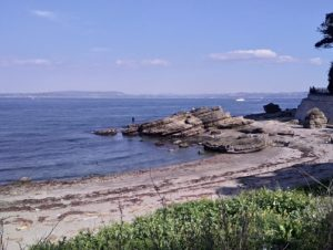 海岸の石拾い