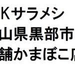 サラメシの富山老舗かまぼこ「生地蒲鉾」特徴と購入方法