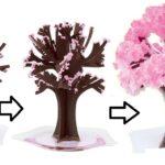 マジック桜が咲く仕組みと綺麗に咲かせる2つのコツ