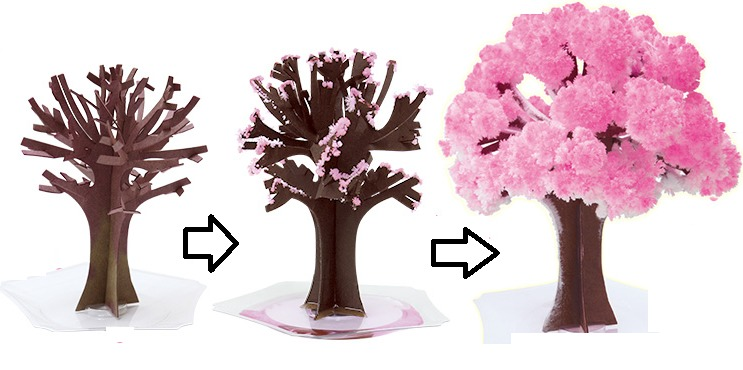 マジック桜が買える5つの販売窓口|コロナ禍のエア花見