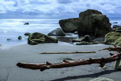 海岸や河川 流木 拾い 持ち帰り